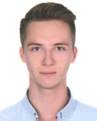 Mikhail Rogov