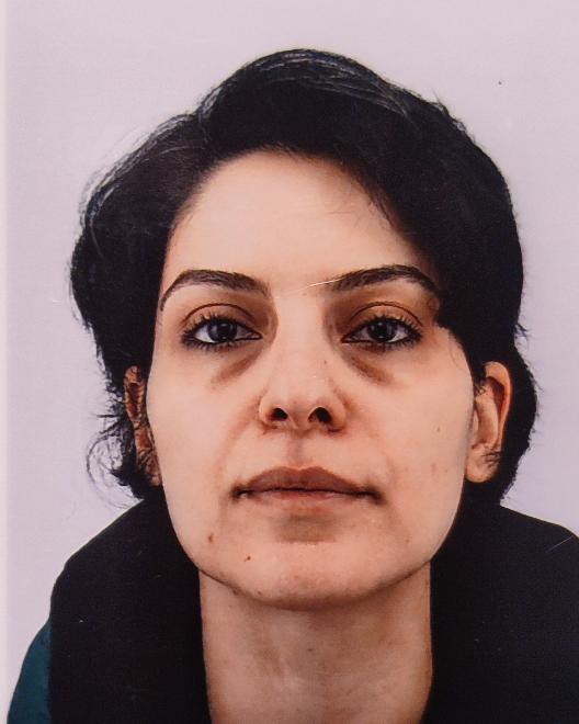 Nasrin Amini Tehrani